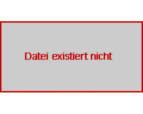 WERKZEUGMASCHINENFABRIK zEULENRODA GMBH Mechanische Pressen PED 63.3-S4 - Bild 2