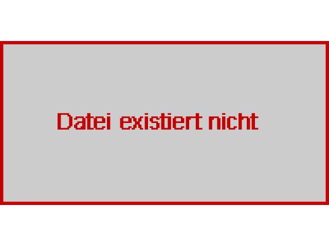 WMW Zeulenroda Mechanische Rundbiegemaschinen UBBDH 2x1250 - 2