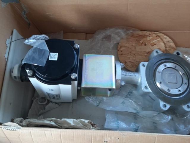 TYCO PremiAir 070 Pneumatischer Schwenkantrieb mit Ex-Klappe - 2